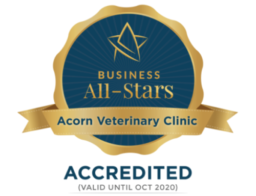 Acorn Vet have been awarded the coveted All-Ireland Business All-Star accreditation!